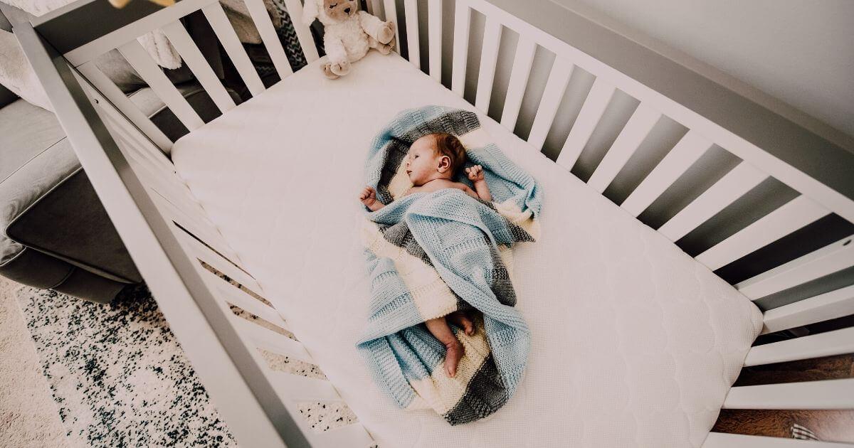 新生児と犬がいたらベビーベッドは必要