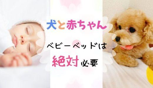 新生児と犬|ベビーベッドは必要?いつまで使えるの?実際に使った経験談