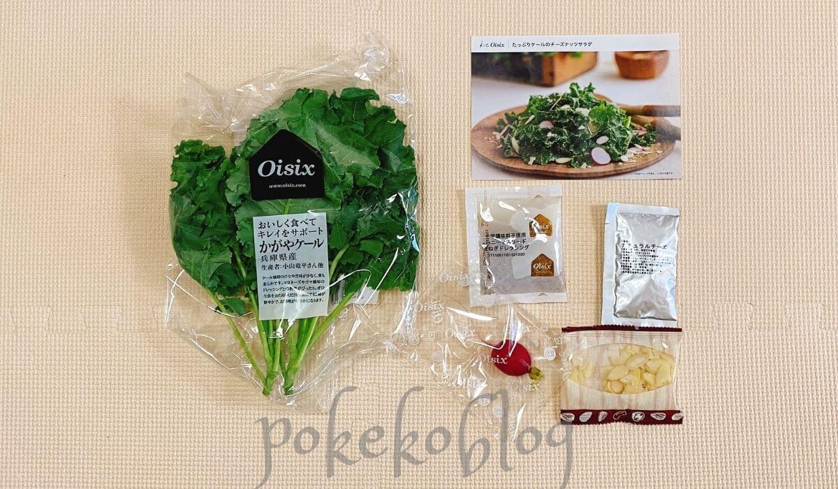ミールキット Kit Oisix|たっぷりケールのチーズナッツサラダの中身